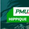 PMU E-Tirelire.png